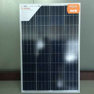 100W Solar Panel From Super Supplier in China