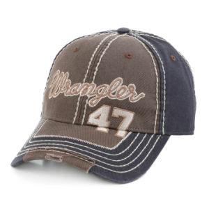 Thick Thread Embroidery Washed Cap pictures & photos