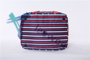 Picnic Sealed Lunch Bag Lunch Tote Bag Storage Bag pictures & photos