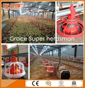 Quality Cheap Poultry Farming Equipment with Customized Prefab Shed pictures & photos