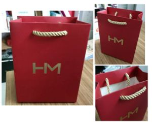 Custom Luxury Cosmetic Paper Gift Bag pictures & photos