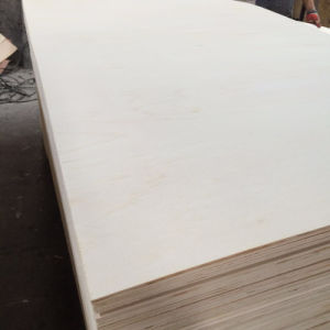 Poplar Veneer Packing Plywood for Furniture Packing Pallet (6X1220X2440mm) pictures & photos