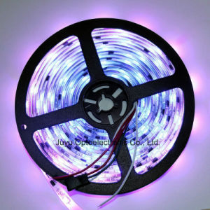 IP67 Waterproof Silicon Tube SMD5050 RGB Full Color LED Strip pictures & photos