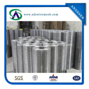 Stainless Steel 304 316 3/4 Inch Welded Wire Mesh pictures & photos