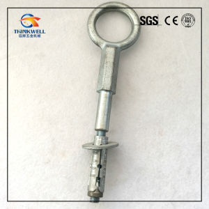 Galvanized Forged Steel Scaffolding Rings Eye Expansion Bolts with Anchor pictures & photos