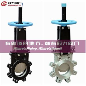 ANSI Lug Type Knife Gate Valve pictures & photos