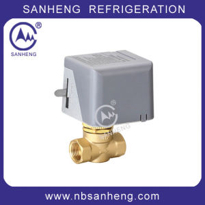Air Conditioner Motorized Ball Valve with Actuator 24V (DF/F-02) pictures & photos
