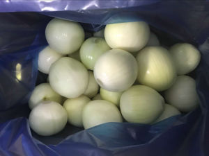 4-6cm New Crop Peeled Onion Supplier pictures & photos
