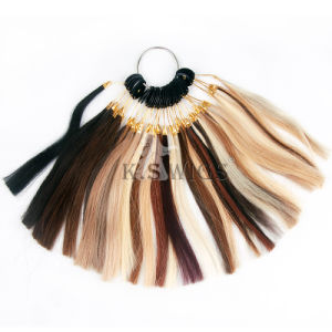 Hair Extension Color Ring Human Hair pictures & photos