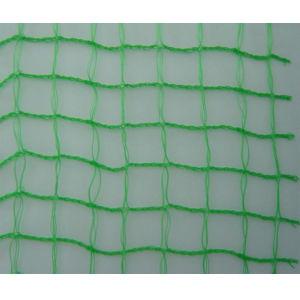Nylon Anti Bird Netting Manufacturer pictures & photos