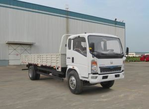 Sinotruck HOWO Cargo Truck pictures & photos