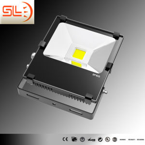 Driverless COB LED Floodlight with CE RoHS pictures & photos