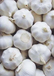 Fresh Chinese Garlic Vegetables with Normal White Color pictures & photos