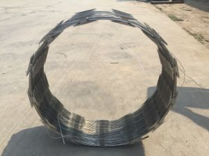 HDG Razor Barbed Wire Cbt65/Factory Supplier pictures & photos