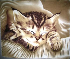 Newest Animal Printed Designs Fleece Blanket, Carpet, Coral Fleece Blanket pictures & photos