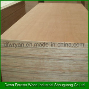 Furniture Used Hardwood Core Plywood pictures & photos