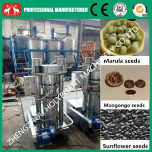 100kg/H Sunflower Seeds Hydraulic Cold Oil Press Machine (0086 15038222403) pictures & photos