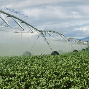 Huge Farmland Underground Center Pivot Irrigation System for Big Farm pictures & photos