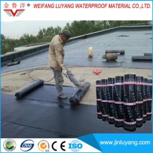 Sbs/APP Modified Bitumen Waterproof Membrane for Roof Garden/Planting Roof pictures & photos