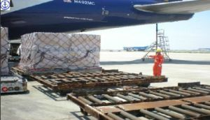 Consolidate Air Freight/Express Logitstics Service to Europe Shipping pictures & photos