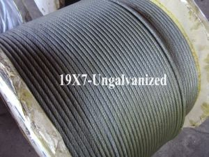Ungalvanized Steel Wire Rope (19X7) pictures & photos