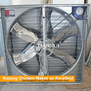 Poultry exhaust fan chicken farm fan Centrifugal fan pictures & photos