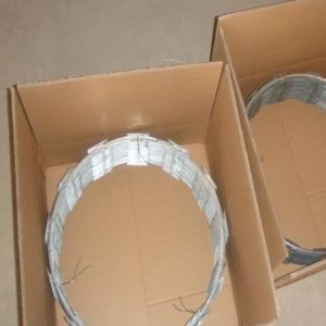 Carton Packing Cbt-65 Concertina Razor Blade Wire Fencing pictures & photos