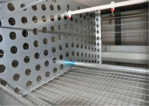 Poul Tech Automatic Chicken Poultry Cage Farm Equipment for Breeder Chicken Cage (H Frame) pictures & photos