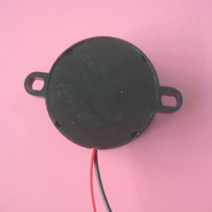 Top Sales High Quantity Large Produce Internal Drive Piezo Buzzer pictures & photos