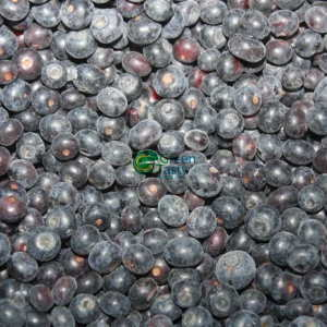 100% IQF Blueberries with FDA Standard
