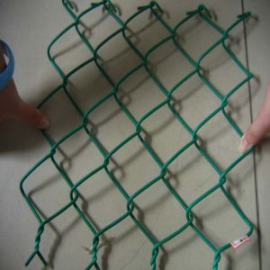 SGS Tested PVC Coated Chain Link Fence pictures & photos