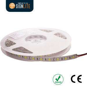 3 Year Warranty Flexible/Rope 30LEDs DC12V 6watt SMD5050 Non-Waterproof IP65 LED Strip Light pictures & photos