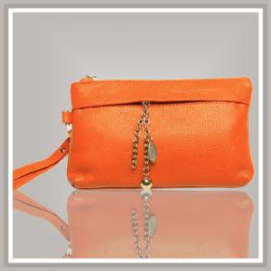 Lady Clutch Bags (C201107C001)