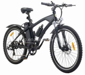 Mountain Electric Bikes (Mountain Star)