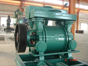 Stainless Steel Chemical Pump (2BE3) Water Ring Vacuum Pump pictures & photos
