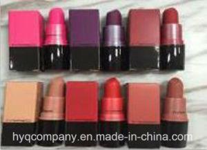 New Arrival Mc 6 Colors Matte Lipstick pictures & photos