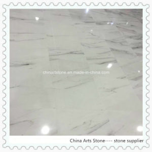 Calacatta Lincoln White Marble Tiles for Wall pictures & photos
