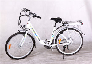 Green City Electric Bike