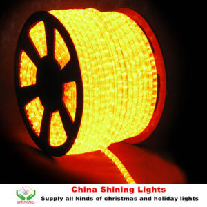 Waterproof Holiday Rice Bulb Rope Light pictures & photos