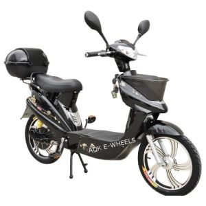 Electric Bicycle (EB-008) pictures & photos