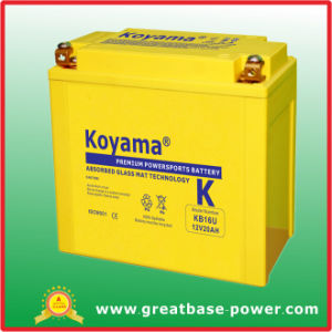 Koyama Battery Motorcycle Battery 12V 20ah pictures & photos