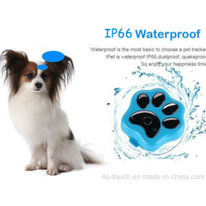 Newest IP66waterproof 3G Mini Pet GPS Tracker with Collar V40 pictures & photos