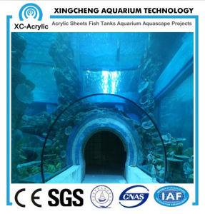 Unique Acrylic Tunnel pictures & photos