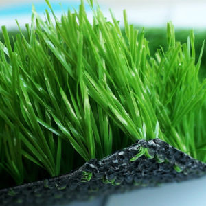 High Wear-Resisitance Artificial Soccer Grass (G-5001) pictures & photos