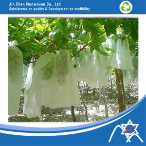 PP Nonwoven Fabric for Grape Cover pictures & photos