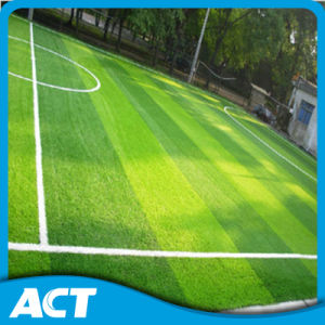 Made in China Football Grass Excellent Supplier Direct Manufacturer pictures & photos