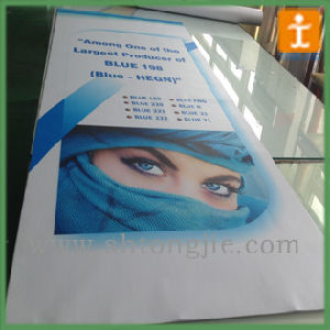 Fashion Promotion Printed Poster pictures & photos