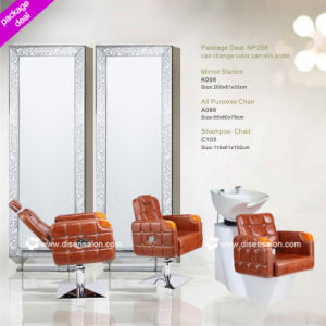 All Purpose Chair, Incline Chair, Shampoo Chair, Salon Mirror, Titable Salon Chair (Package deal NP258) pictures & photos