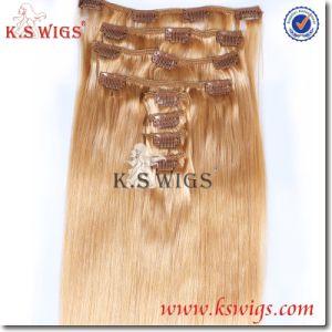 Brazilian Virgin Human Hair Clip in Hair Extension pictures & photos