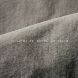 Jacquard Nylon Cotton Fabric with Teflon Finishment (SL3398) pictures & photos